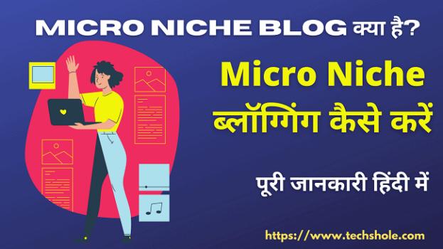 Micro Niche ब्लॉग क्या है - Micro Niche ब्लॉग्गिंग कैसे करें - पूरी जानकारी हिंदी में